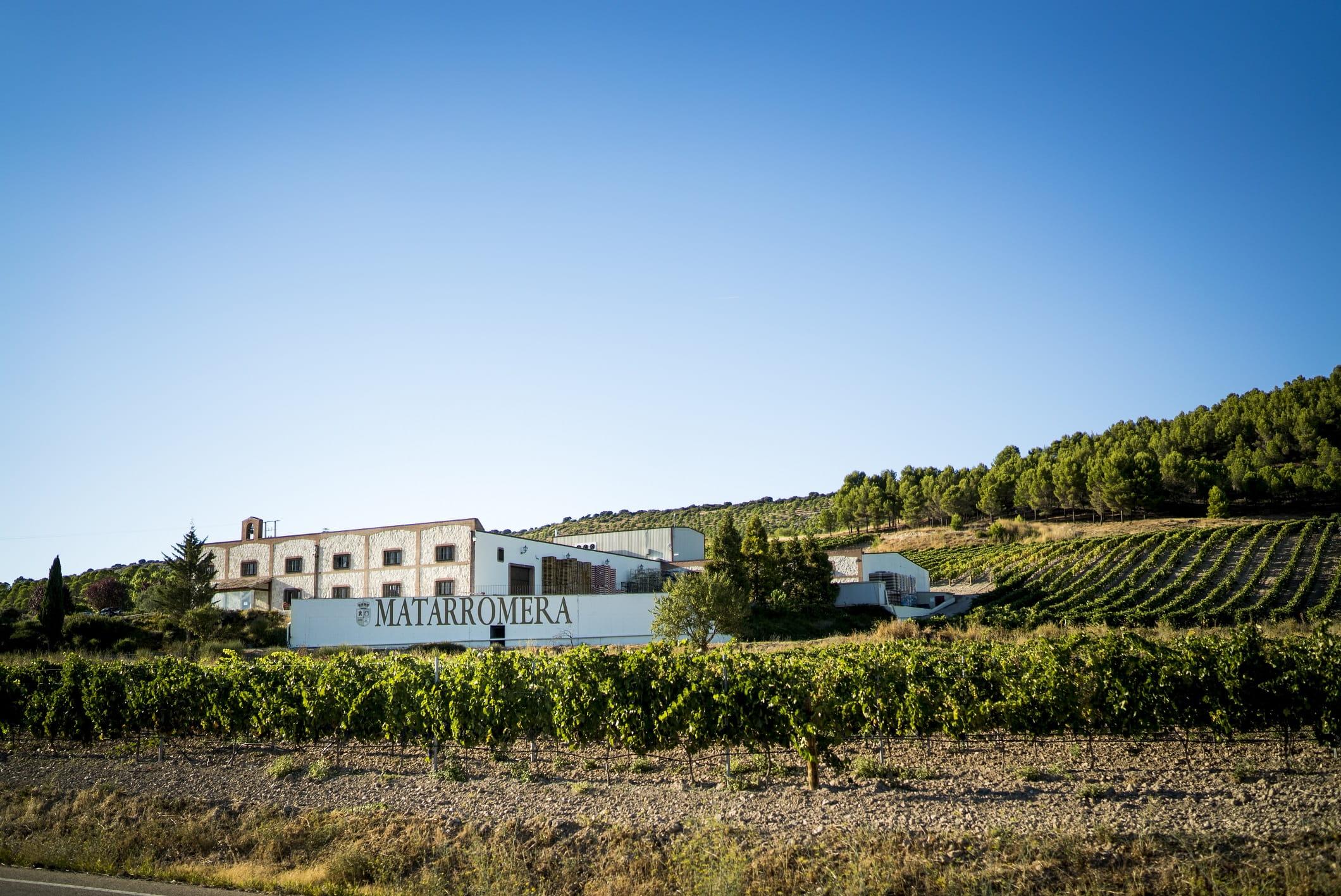 Bodega Matarromera cierra 2016 con una facturación de 22,5 millones de euros