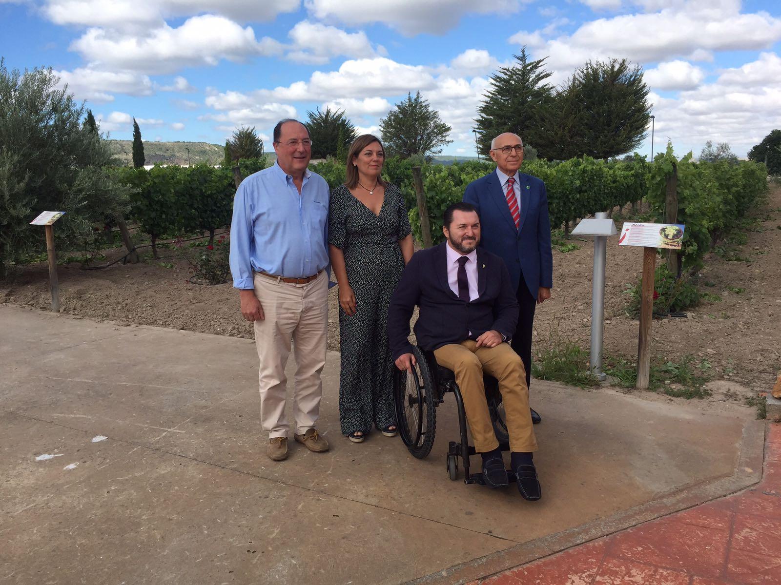 Matarromera avanza en la inclusión social y la inserción laboral de personas con discapacidad intelectual