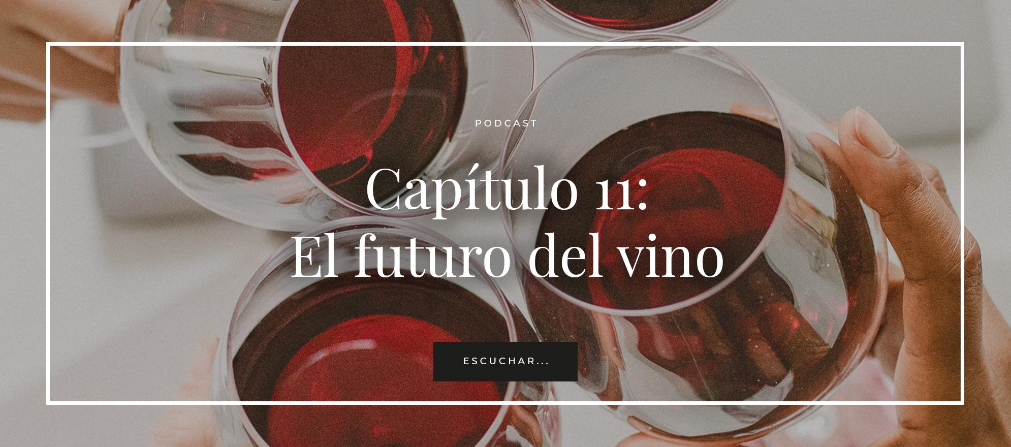 podcast 11 el futuro del vino. Matarromera